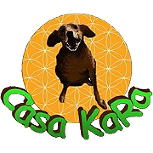 B&B Vegan Casa KaRa